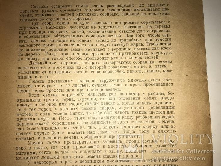 1923 Киевское Издание Сбор хранение семян всего-1000 тир, фото №10