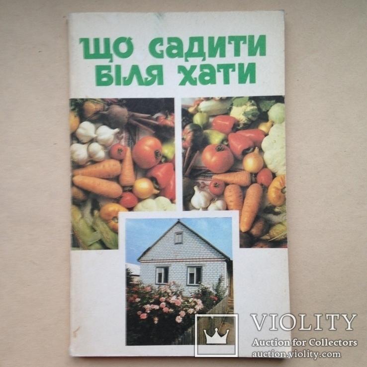 Що садити бiля хати. 1993  128 с. ил., фото №2