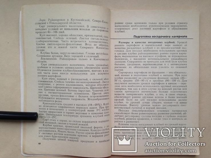 Ранний картофель. Продовольственная программа в действии. 1983 104 с., фото №5