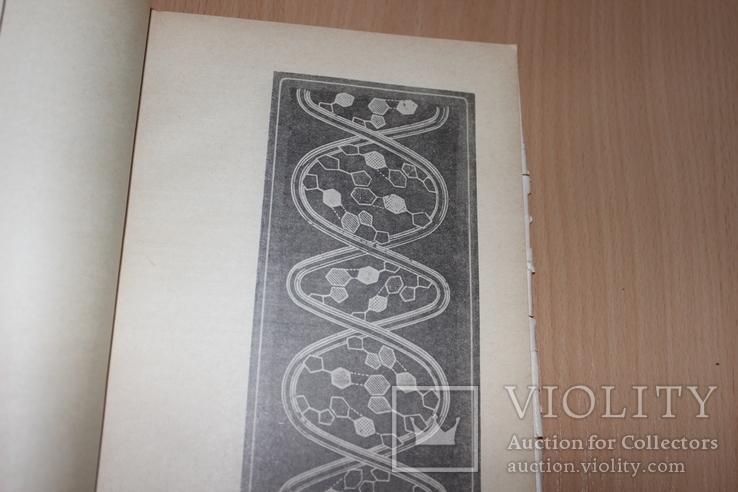 Тайнопись жизни .Азерников 1966 год  Все о ДНК, фото №4