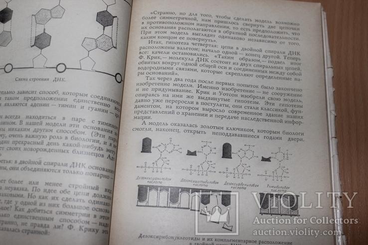 Тайнопись жизни .Азерников 1966 год  Все о ДНК, фото №5