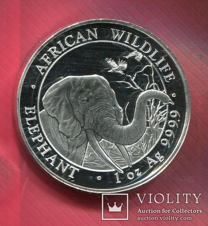 Сомали 100 шиллингов 2018 UNC Слон, фото №2