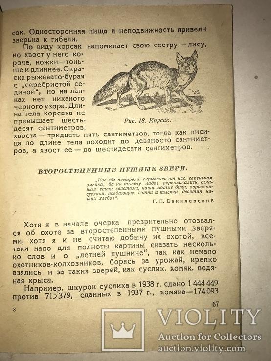 1939 Охота с Ружьём по Придонью, фото №3