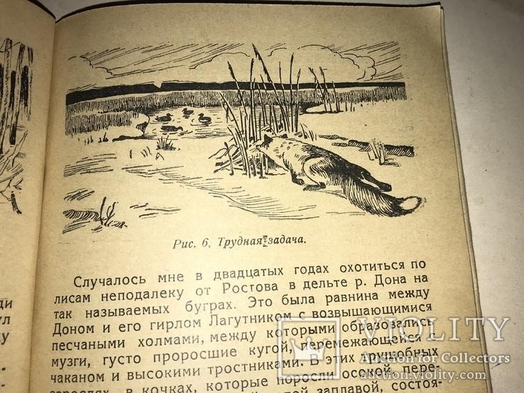 1939 Охота с Ружьём по Придонью, фото №7