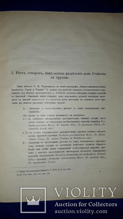 1915 Палеонтологические заметки 31.5х25 см., фото №5