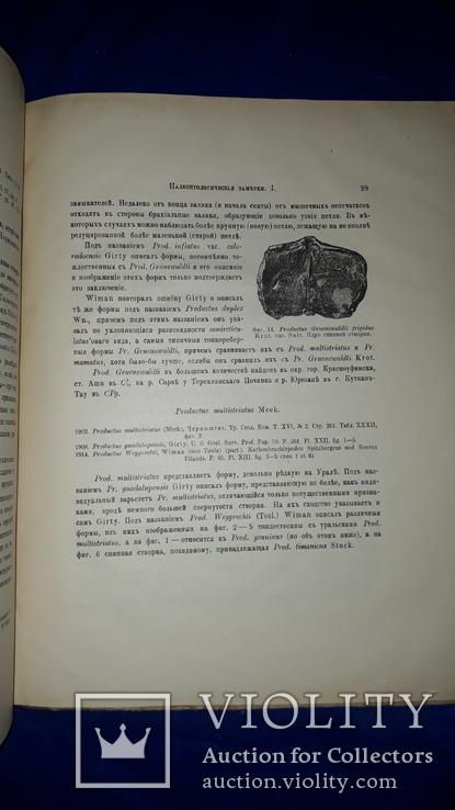 1915 Палеонтологические заметки 31.5х25 см., фото №12