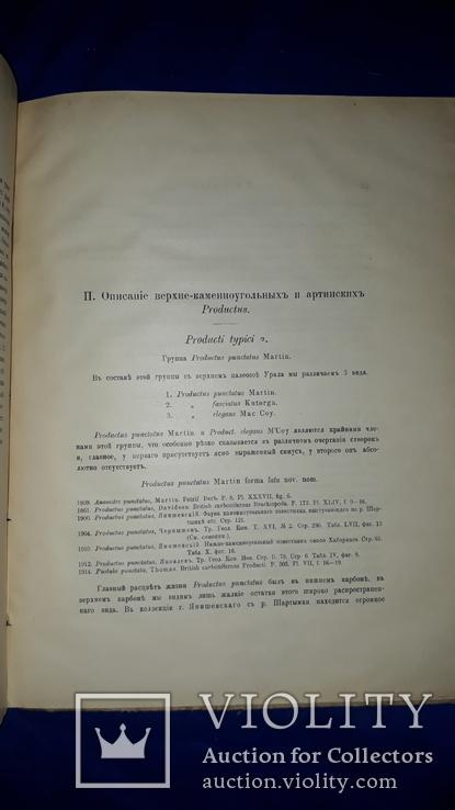 1915 Палеонтологические заметки 31.5х25 см., фото №13