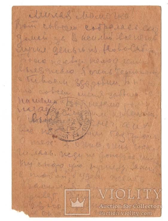 Очистим в 3 года социалистические поля от саранчи и сусликов, агитация 1932 год, фото №3