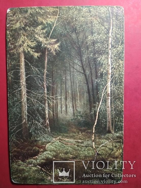 Иван Шишкин. Жизнь в лесной глуши | Заметки о живописи | Яндекс Дзен | 738x554