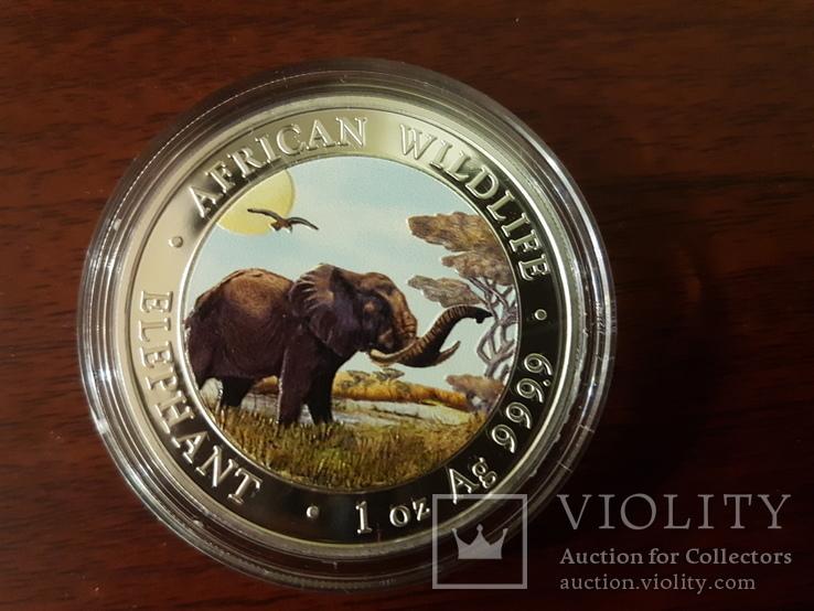 100 шиллингов Сомали 2019г. ''Слон'' Special Edition Тираж 100 шт,серебро,эмаль