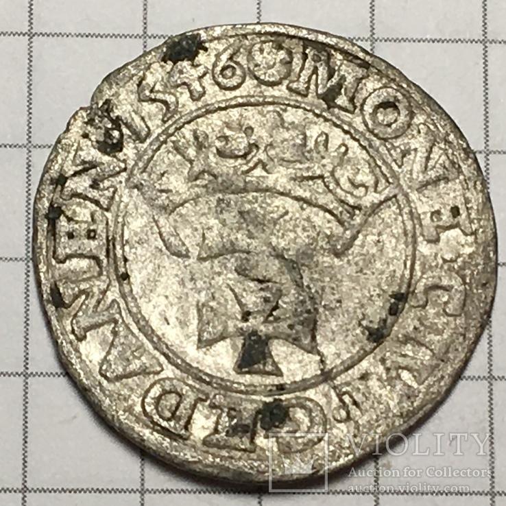Гданьский грош 1546