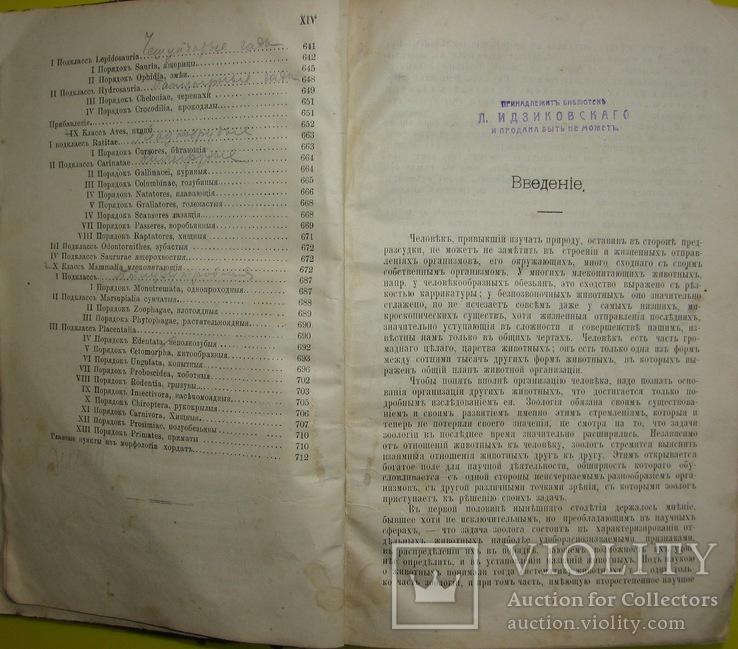 1898  Учебник зоологии. Рихард Гертвиг.  Одесса, фото №6