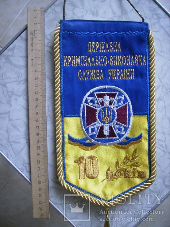 Вымпел МВД 10 лет тюремному департаменту, фото №6