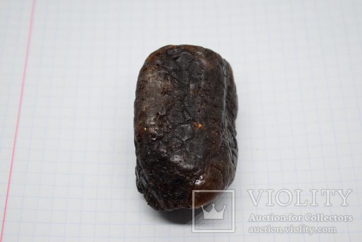 Янтарь, Бурштин Р41, фото №4