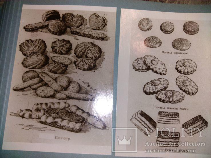 Украинский хлеб Каталог, специздание 1949, фото №7