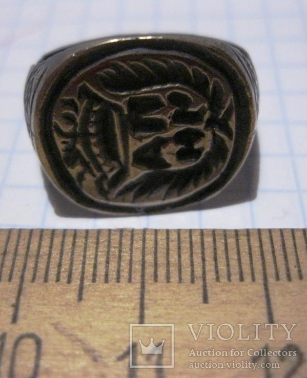 Перстень-печать щитковосрединный, фото №4