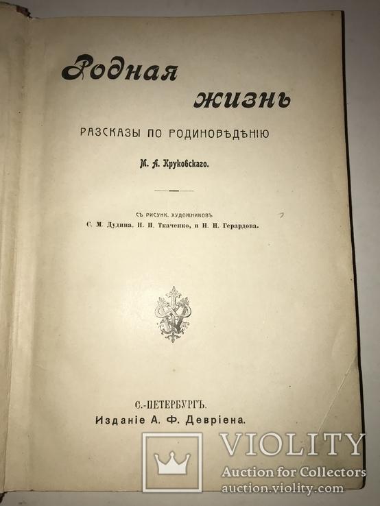 Родина Шикарное издание Девриена иллюстрированное до 1917 г, фото №12