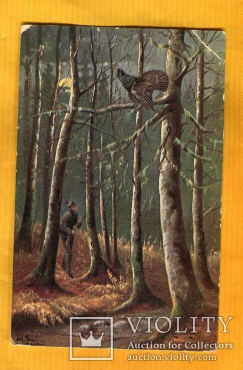 Охота тетерев птица охотник до 1917 г, фото №2