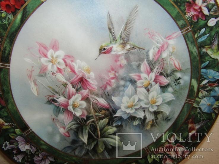 Настенная декоративная тарелка фарфор Колибри Lena Liu's, фото №3