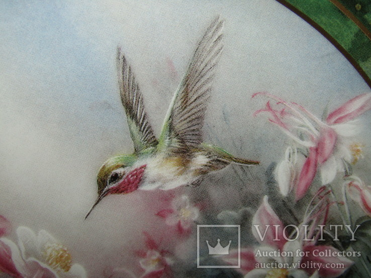 Настенная декоративная тарелка фарфор Колибри Lena Liu's, фото №6