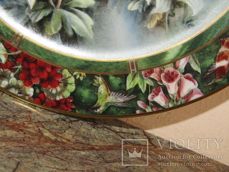 Настенная декоративная тарелка фарфор Колибри Lena Liu's, фото №11