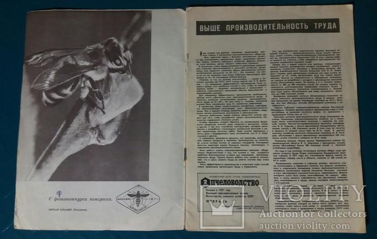 Пчеловодство №2 1972 г. журнал, фото №5