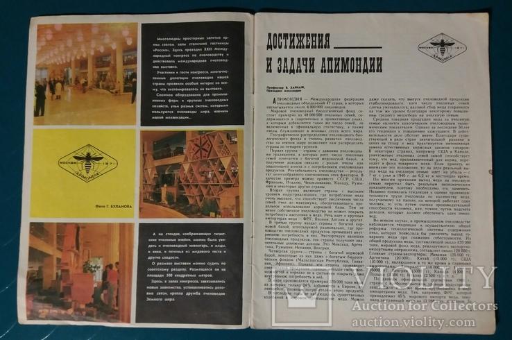 Пчеловодство №1 1972 г. журнал, фото №5