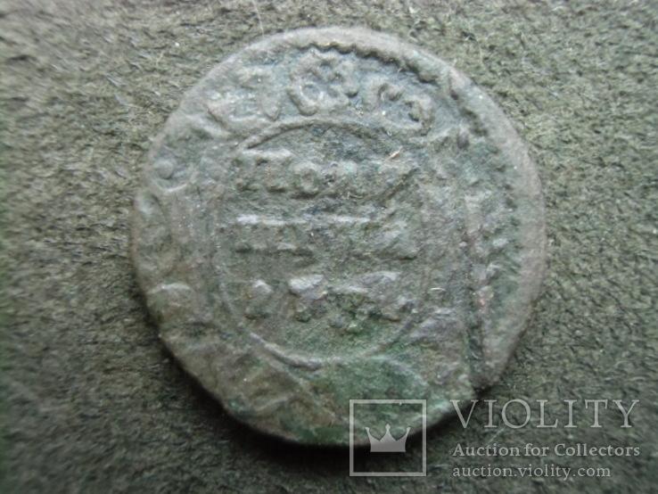 Полушка 1734 года. ЦФН №27, фото №2