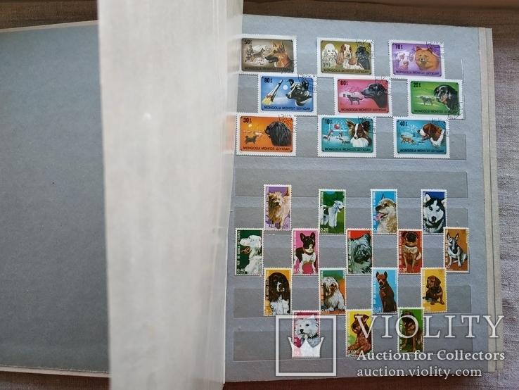 Альбом марок флора и фауна негашеные и гашеные около 640 шт.