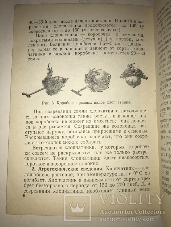 1951 Коллекция Хлопчатник Минералы и Горные Породы, фото №11
