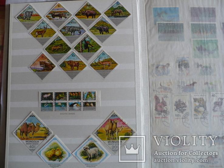 Около 200 марок и 56 сцепок,м.л., темы Фауна,флора в альбоме, фото №6