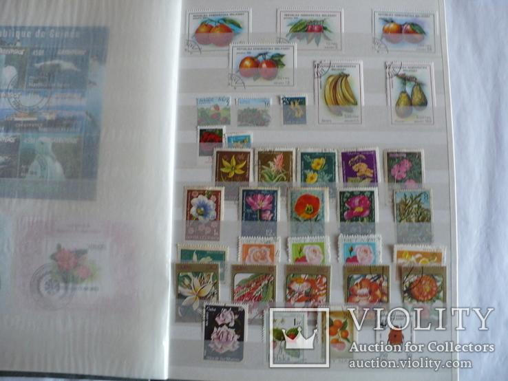 Около 200 марок и 56 сцепок,м.л., темы Фауна,флора в альбоме, фото №11