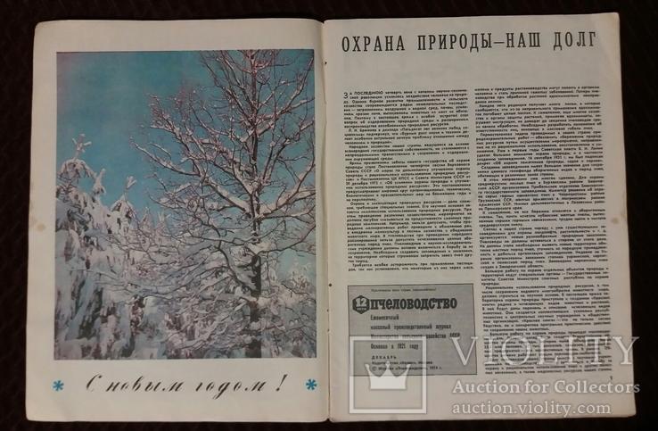 Пчеловодство №12 1974г. журнал, фото №5
