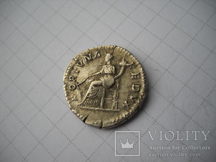 Денарий Септимий Север (193-211), фото №4