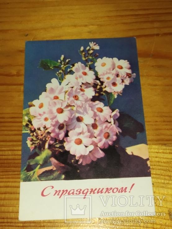 Открытка. С праздником! Фото. Е. Игнатович. 1969р.