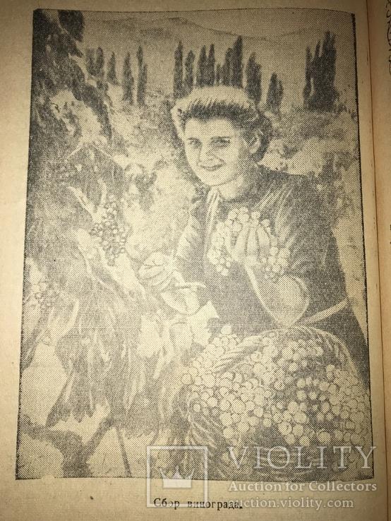 1947 Винокомбинат Массандра