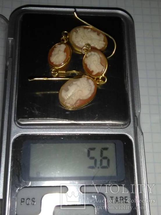 Старые серьги с камеями на раковине.Серебро, фото №5