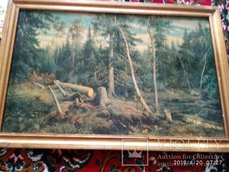 Репродукция Валка леса