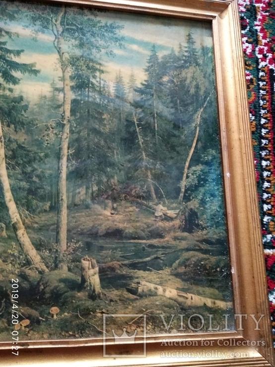 Репродукция Валка леса, фото №3