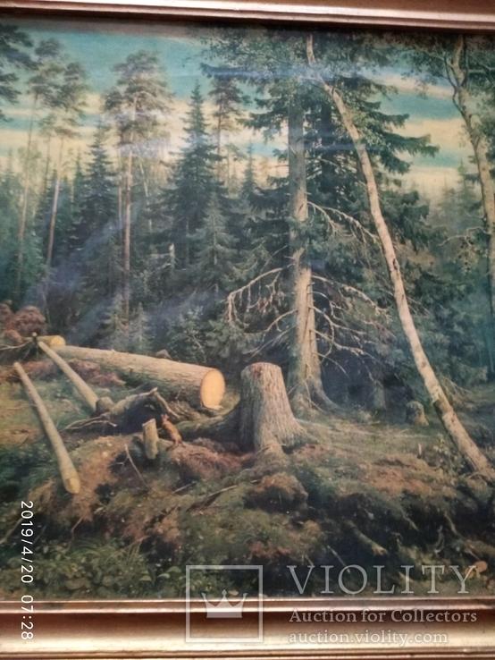 Репродукция Валка леса, фото №5