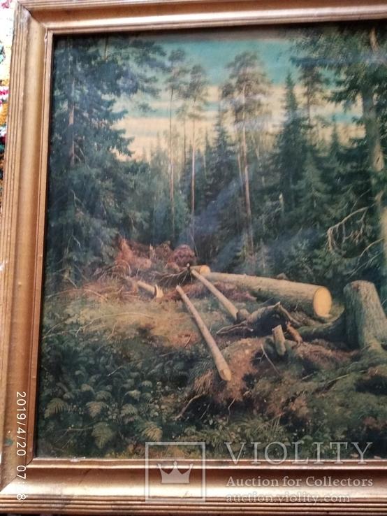 Репродукция Валка леса, фото №6