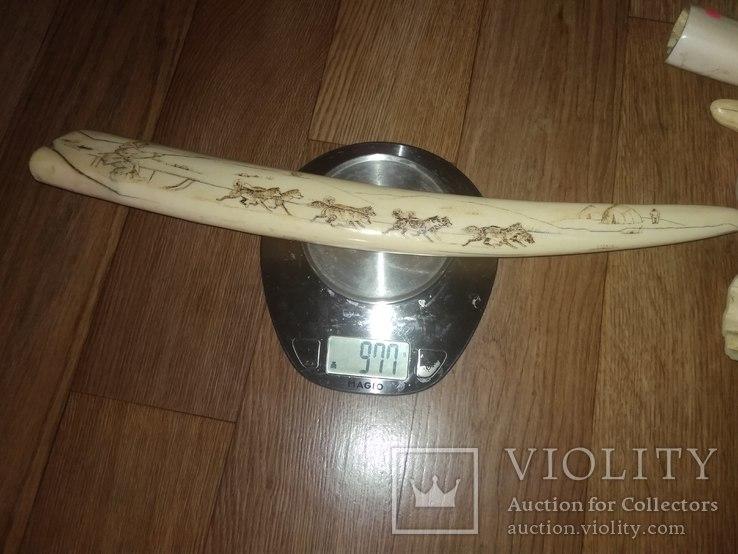 Клык моржа с рисунком 0,98 кг, фото №4