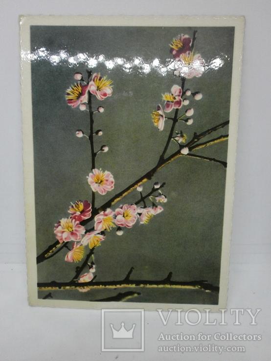 Открытка Вьетнам. Персиковые цветы