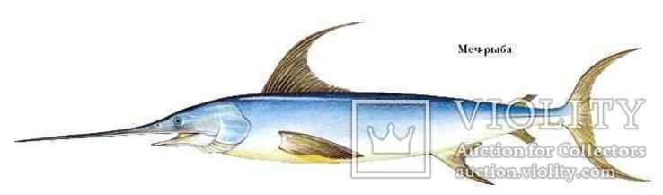 Меч ручной работы из рыбы-меч, фото №9