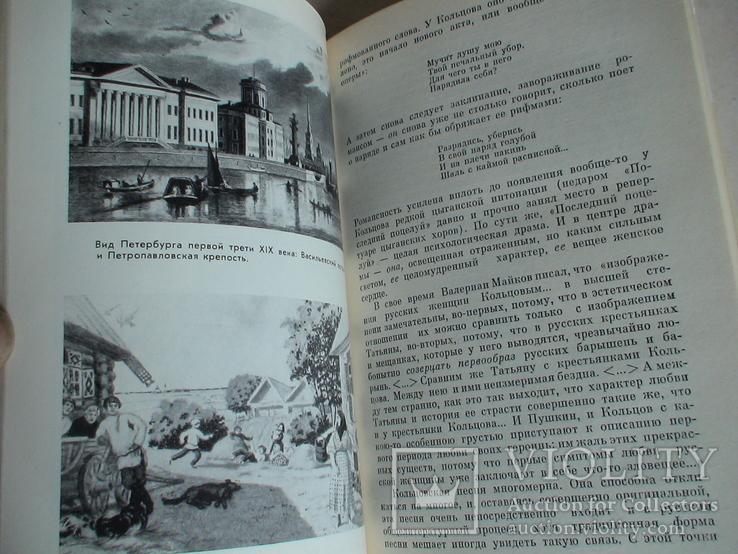 ЖЗЛ (жизнь замечательных людей) Кольцов 1983р., фото №4