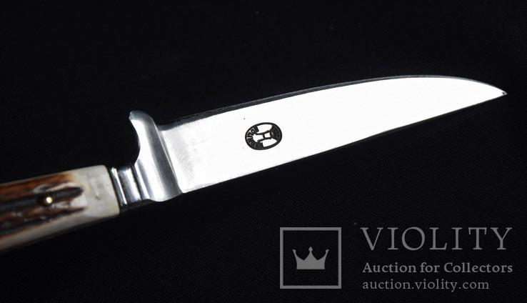 Нож охотничий Solingen с чехлом, фото №4