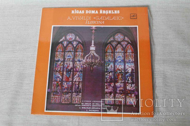 Плвстинка. Евгения Лисицына орган Рижского собора Ламинат, фото №2
