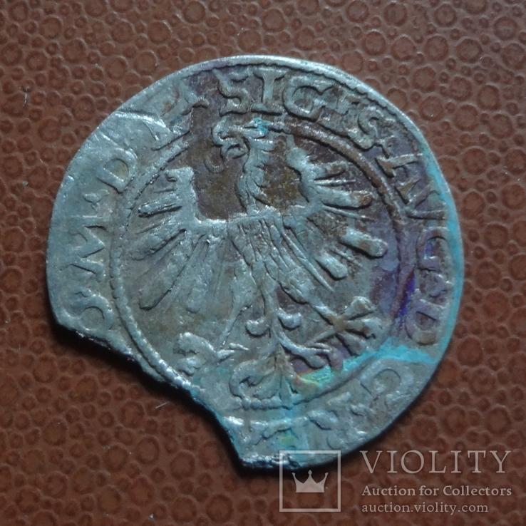 Полугрош  1563  серебро  (М.5.28), фото №5