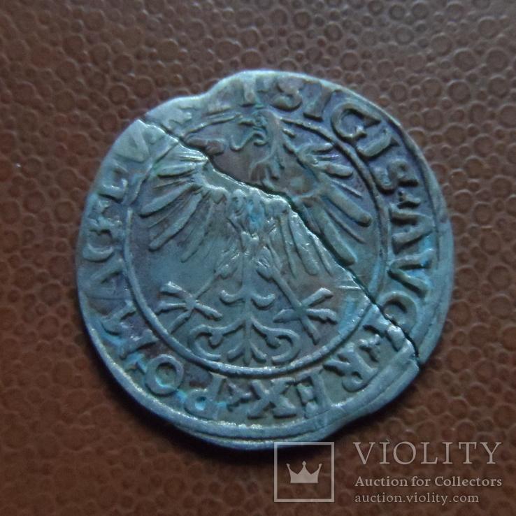 Полугрош  1556   серебро   (М.3.18)~, фото №4