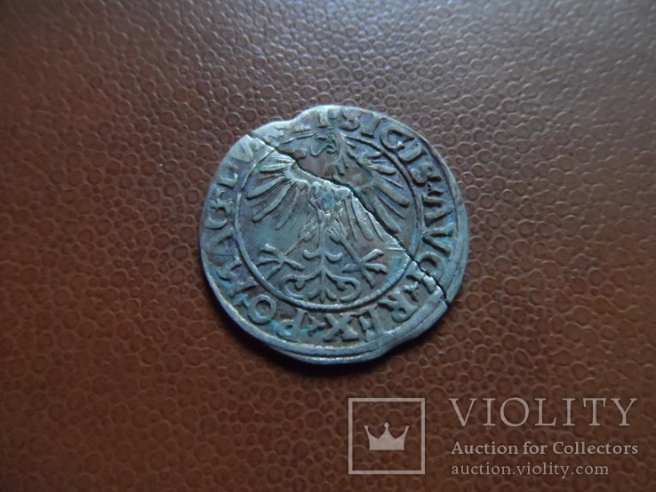 Полугрош  1556   серебро   (М.3.18)~, фото №6